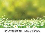 vector summer nature ... | Shutterstock .eps vector #651041407