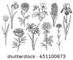 flower collection  illustration ...   Shutterstock .eps vector #651100873