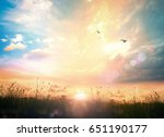 beautiful meadow sunset... | Shutterstock . vector #651190177