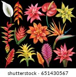 set of tropical flowers | Shutterstock .eps vector #651430567