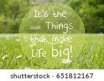 gras meadow  daisy flowers ... | Shutterstock . vector #651812167