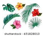 set of stylized tropical plants