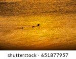 meeting sunset on kayaks. view... | Shutterstock . vector #651877957