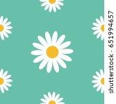 White Daisy Chamomile Icon....