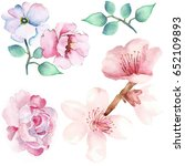 rose and flowers watercolor | Shutterstock . vector #652109893