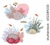 hand drawn underwater natural... | Shutterstock .eps vector #652289233