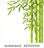 green bamboo stems with leaves... | Shutterstock .eps vector #652524763