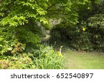 garden background | Shutterstock . vector #652540897