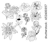 vector set of flowers hand... | Shutterstock .eps vector #652600357