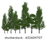 trees in a row isolated on... | Shutterstock . vector #652604707