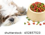 dog be bored with dog foods ... | Shutterstock . vector #652857523