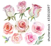watercolor roses and leaves | Shutterstock . vector #653010097