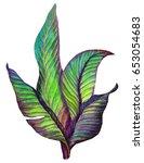 tropical leaves. aquarelle... | Shutterstock . vector #653054683