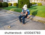 Man with a horse head street musician playing the accordion outdoors, funny prank