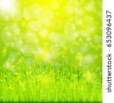 green summer background with... | Shutterstock .eps vector #653096437