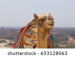 close up of camel against... | Shutterstock . vector #653128063