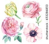 tulip  anemones  ranunculus ...   Shutterstock . vector #653286853