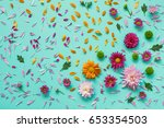 Colored Asters On Canvas....