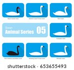 Set Of Swan Vector Icons ...