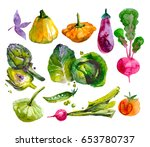 hand drawn set with watercolor... | Shutterstock . vector #653780737