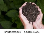 earth in hands   Shutterstock . vector #653816623