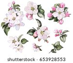 Stock photo set watercolor elements of peach apple flowers collection leaves branches bud floral 653928553