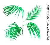 set of tropical leaves. palm... | Shutterstock .eps vector #654186067