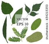 tropical leaves collection... | Shutterstock .eps vector #654215353