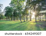 urban park in texas  america ... | Shutterstock . vector #654249307
