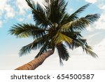 coconut palm trees  with blue...   Shutterstock . vector #654500587