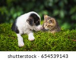 little puppy with a little... | Shutterstock . vector #654539143