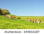 cows in emmental region ... | Shutterstock . vector #654816187