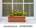 A Tub Of Pansies On A Window...