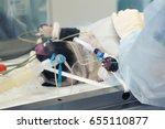veterinary doctors conducting... | Shutterstock . vector #655110877