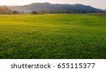 Singha Park  Boon Rawd Farm  ...