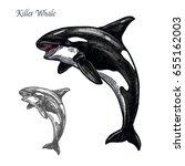 killer whale sea animal... | Shutterstock .eps vector #655162003