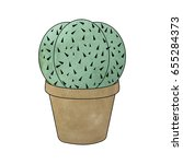 watercolor cactus isolated on... | Shutterstock .eps vector #655284373
