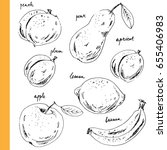 hand drawn ink sketch fruits.... | Shutterstock .eps vector #655406983