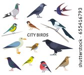 Stock vector city birds vector collection of european birds such as pigeon crow jackdaw gull sparrow tit 655416793