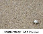 hermit crab on the beach....   Shutterstock . vector #655442863