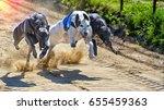 greyhounds racing against each... | Shutterstock . vector #655459363