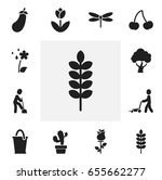 set of 12 editable gardening...