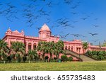 birds flying on ahsan manzil ... | Shutterstock . vector #655735483