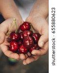 cherries in children hands | Shutterstock . vector #655880623