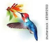 bee hummingbird. realistic...