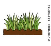 grass and ground | Shutterstock .eps vector #655905463