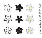 vector of tropical flowers... | Shutterstock .eps vector #655931347