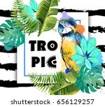 exotic background with parrot... | Shutterstock .eps vector #656129257