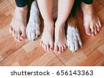 Stock photo son father and the family dog s feet feet best friends and dogs foot human and dog s legs dog s 656143363