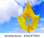 Small photo of Eco house concept. Eco house drawing in a leaf of a big tree, (Aleurites moluccana), with the blue sky as background